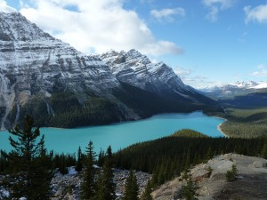 Oct.14'11 Peyto Lake